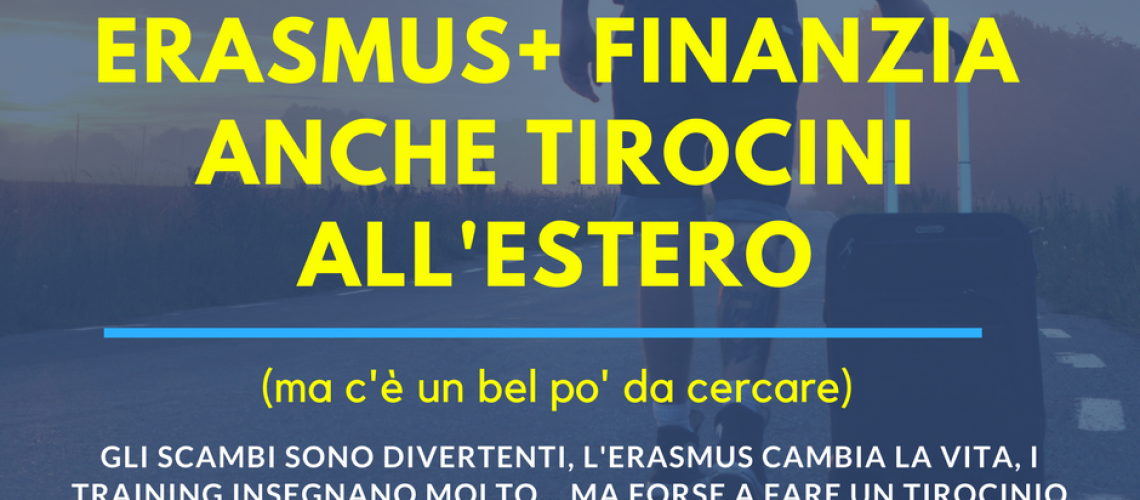 erasmusfacts7